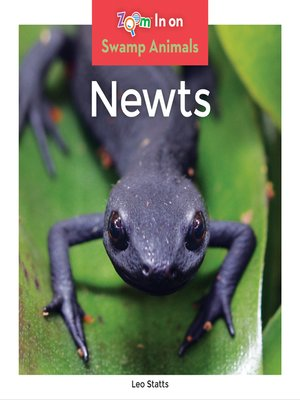 cover image of Newts